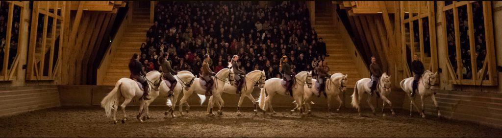 Academie Equestre Bartabas.