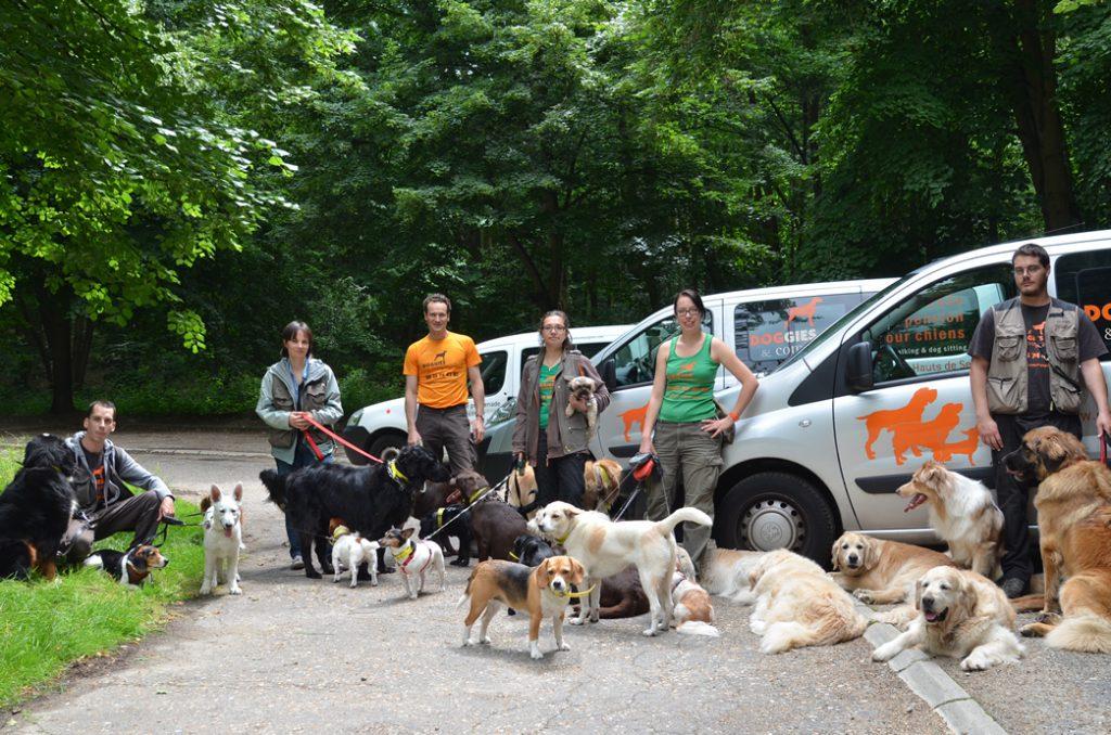 L'équipe doggies et compagnie