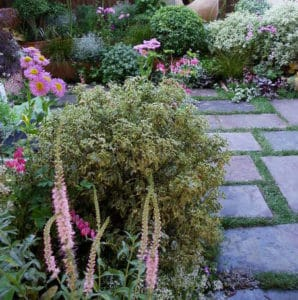Garden Center Fleury & fils - Montesson