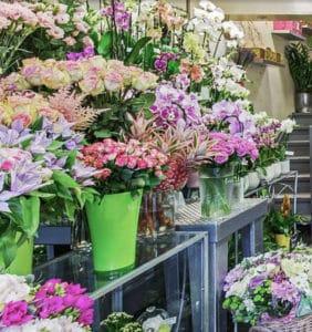 Les fleurs de la maison Rueil Malmaison