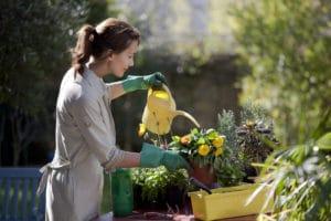 Cultiver son Jardin a l'ouest de Paris