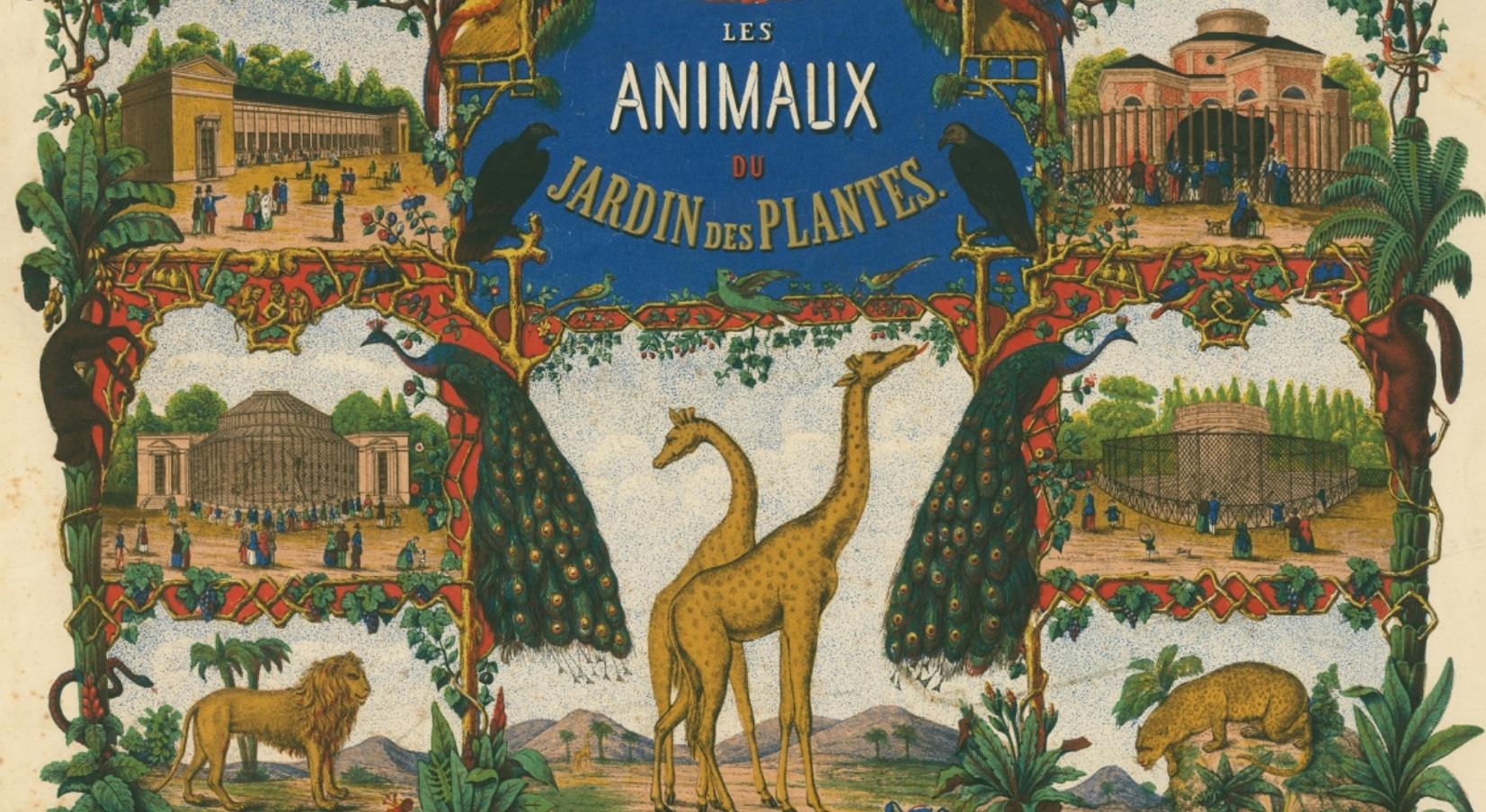 Les animaux du jardin des plantes ouest2paris - Les animaux du jardin ...