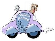 soluce animaux