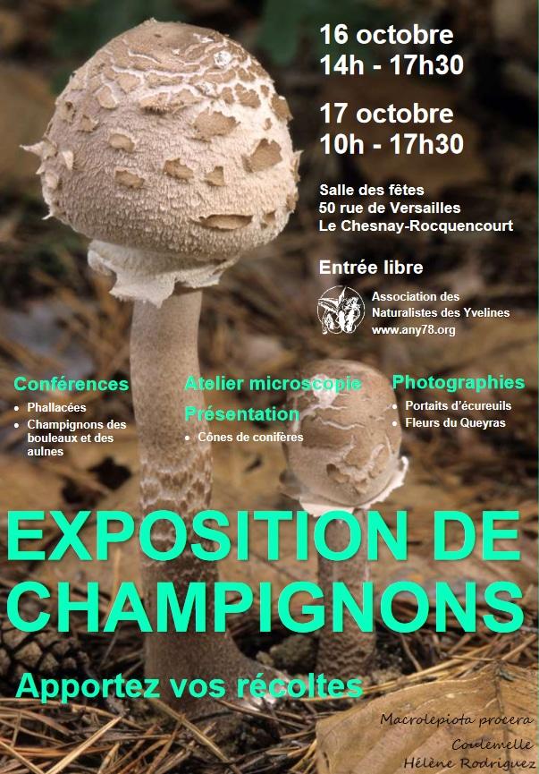 Exposition de Champignons Association de Naturalistes des Yvelines any78