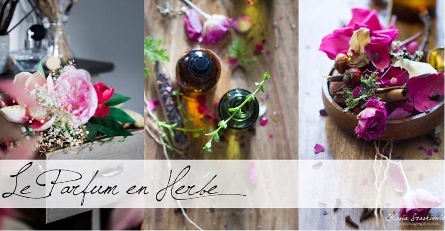 Le parfum en herbe - La boutique ouest de Paris