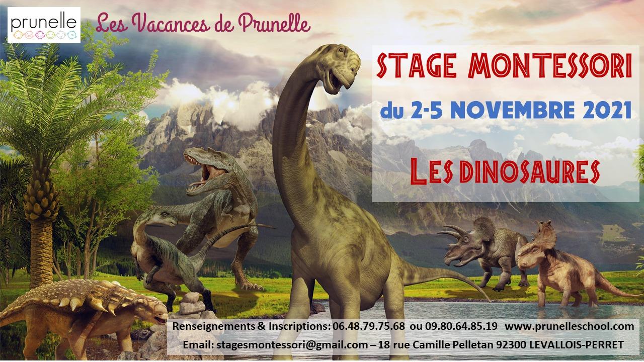 Prunelle School Stage Toussaint Paris Ouest