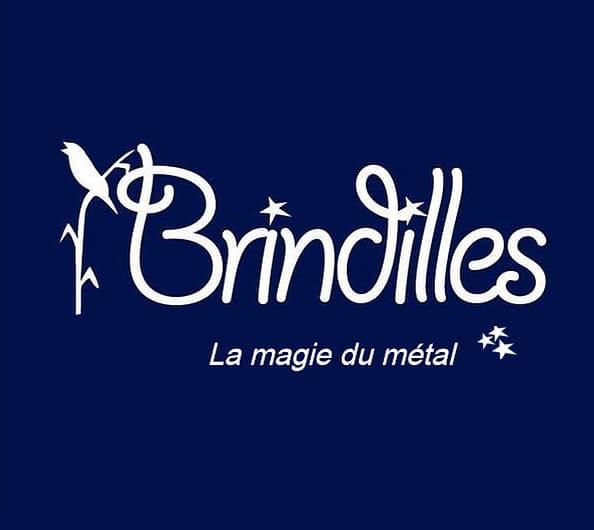 Brindilles a Carrieres sur Seine